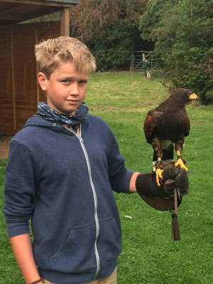 Young Falconers Experience at the Hawk Conservancy Trust